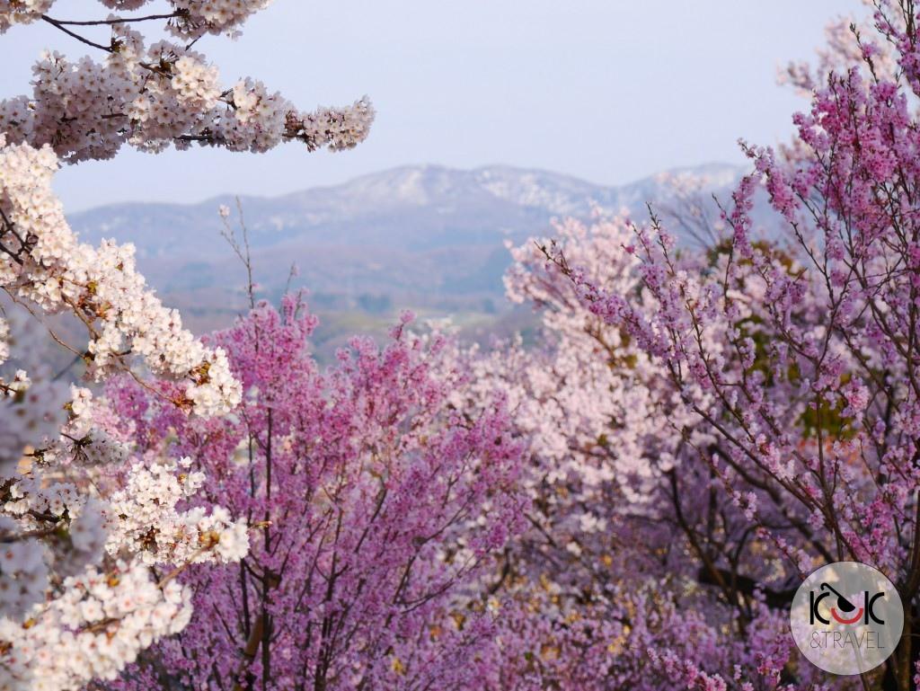 Kanazawa – the pearl of Japan Alps